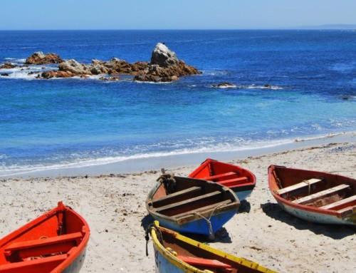 Cape West Coast