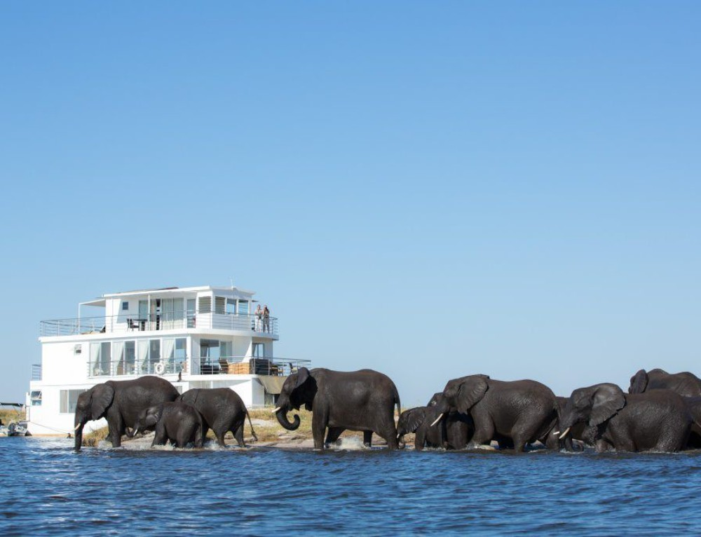 Houseboat Safaris – Chobe River