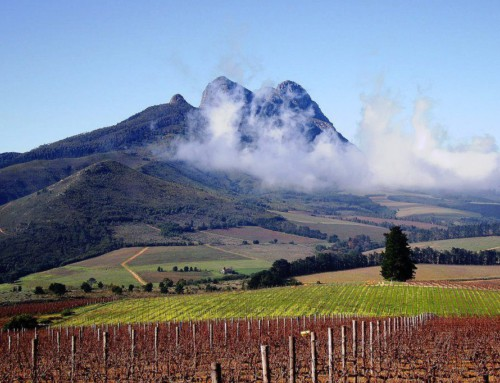 Grand Slam Peninsular and Winelands Tour