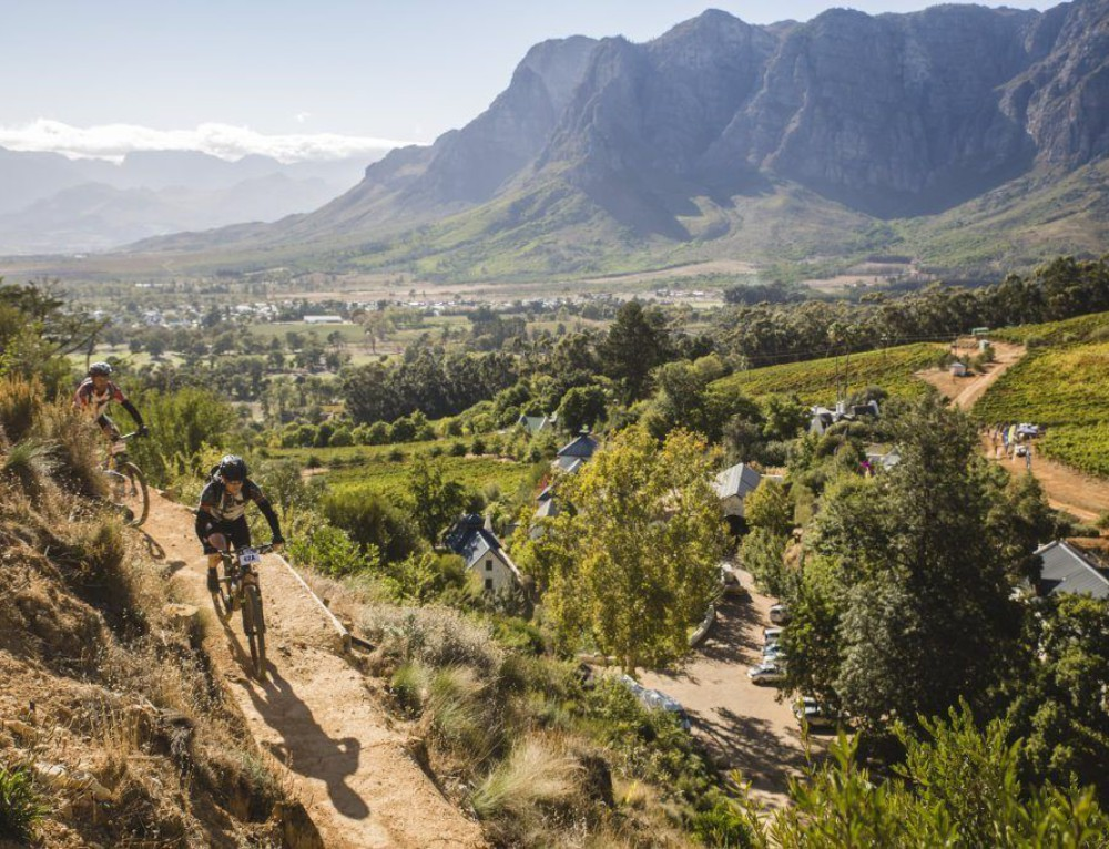 Winelands with Cycling
