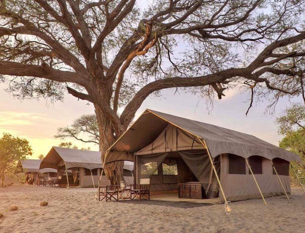 Luxury Tented Safari in Botswana