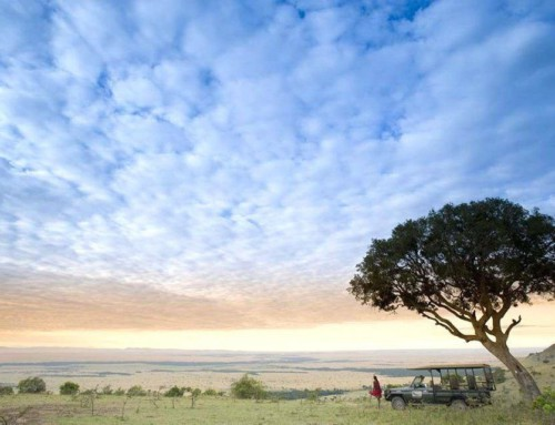 Private East African Safari