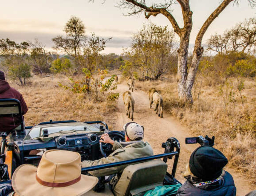 Tailormade African Safaris and Tours