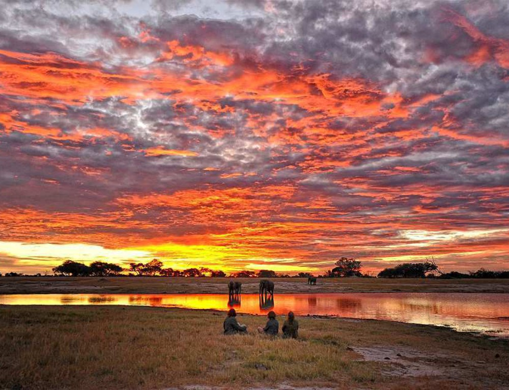 Unforgettable Zimbabwe Safari