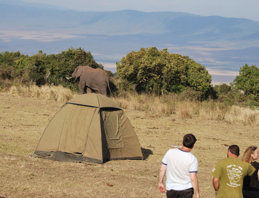 Kenya and Tanzania Tour