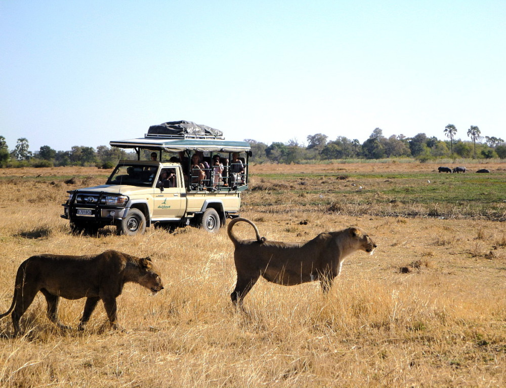 Botswana Accommodated Tour