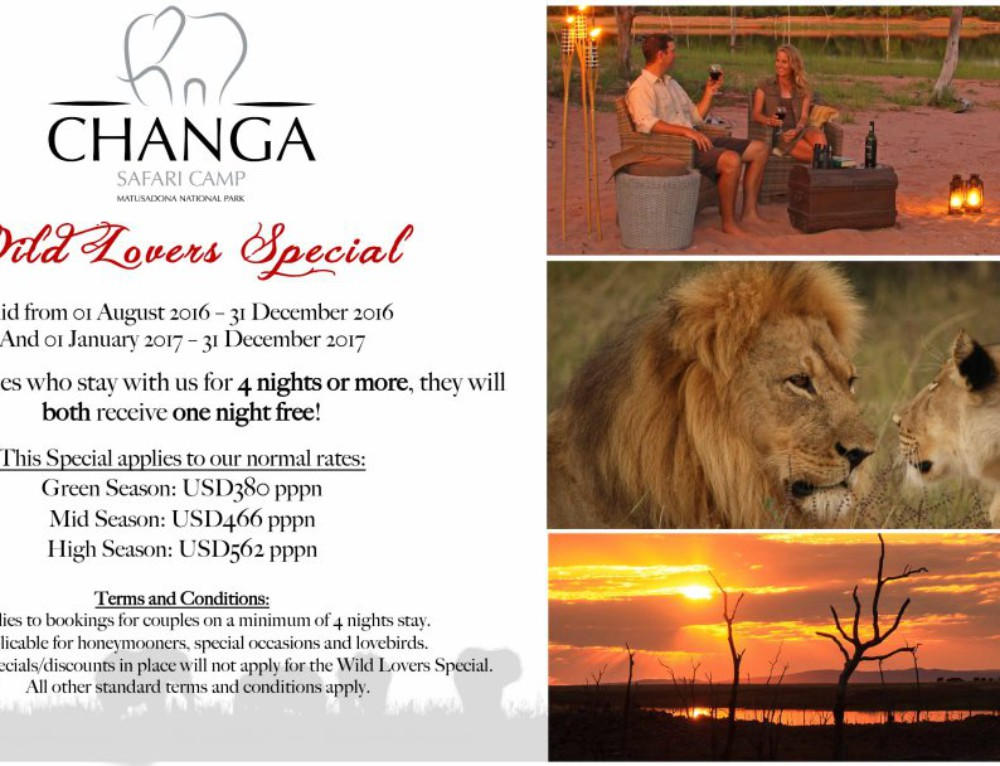 Changa Wild Lovers Special