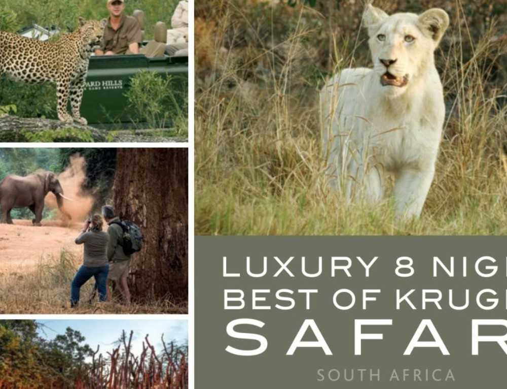 Luxury 8 Night Best of Kruger