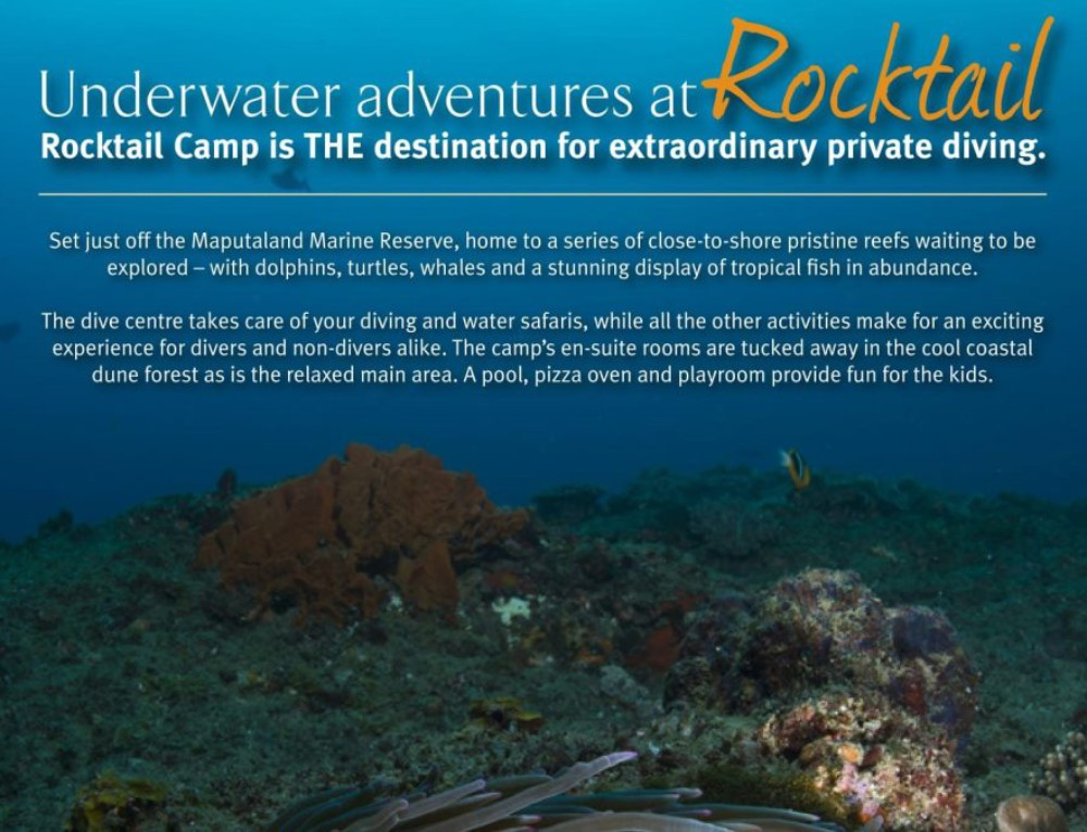 Rocktail Camp 2017 Dive Package