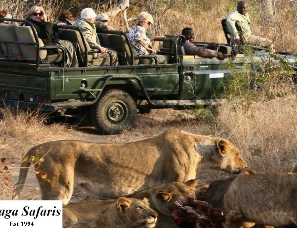 Safari Bookings Direct