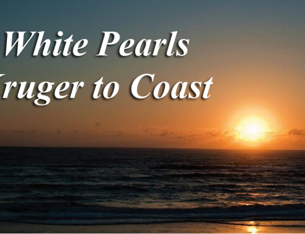 White Pearls Kruger to Coast