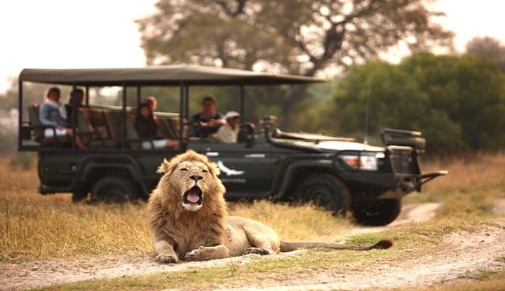 Wings over Botswana (7 Days) | Taga Safaris - An African Safari with the Pioneers