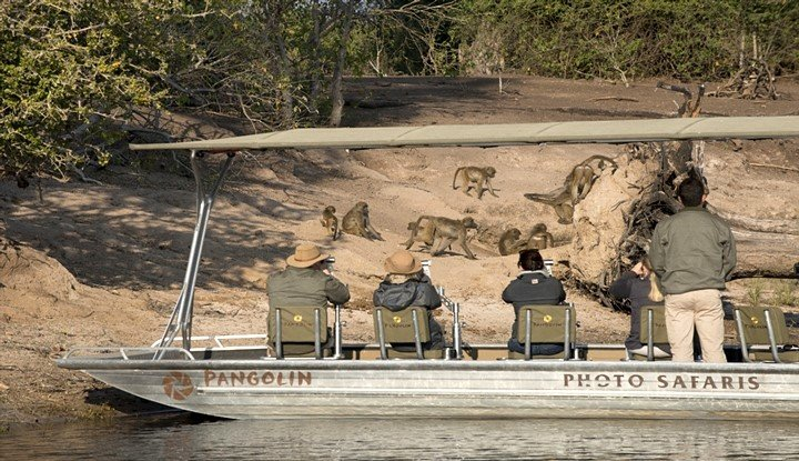 Wings over Botswana (7 Days) | Taga Safaris