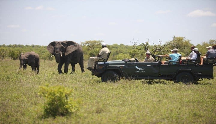 Ngala Lodge and Benguerra (8 Days) | Taga Safaris - An African Safari with the Pioneers