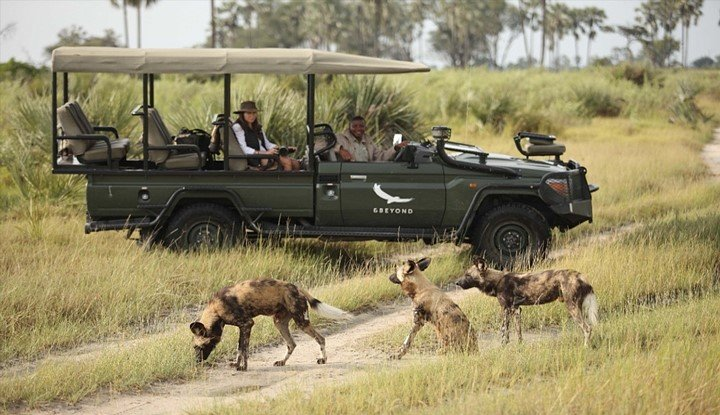 Wings over Botswana (9 Days) | African Safaris with Taga