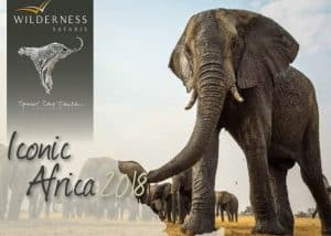 Iconic Africa | African Safaris with Taga