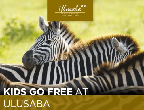 UluSaba Kids go Free