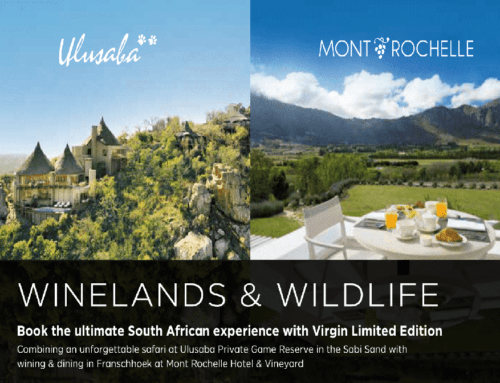 Cape Winelands and Wildlife