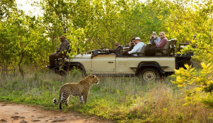 Cape Winelands and Wildlife | African Safaris with Taga