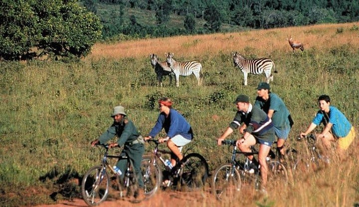 Kruger, Swaziland & KwaZulu/Natal (6, 7 & 8 Days) | African Safaris with Taga