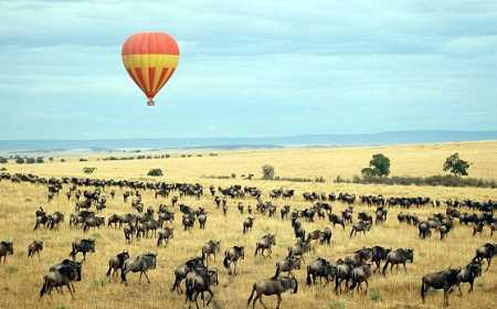 On Safari - The Experience | African Safaris with Taga