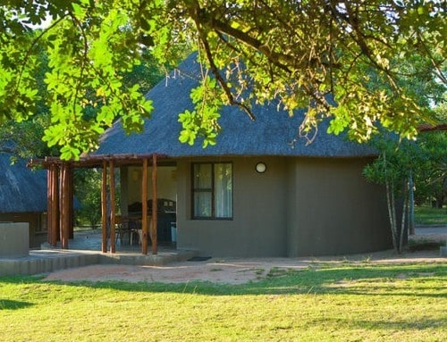 Kruger Park Budget Safaris (3, 4, 5 & 6 Days)