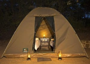 Kruger Camping (3, 4, 5 & 6 Days) | African Safaris with Taga