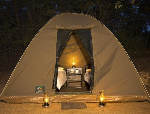 Kruger Park Camping Safaris (3, 4, 5 & 6 Days)