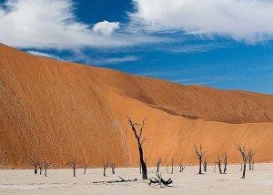 Namib Desert Dune Safari | African Safaris with Taga