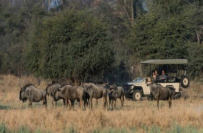 Expedition Safaris | African Safaris with Taga