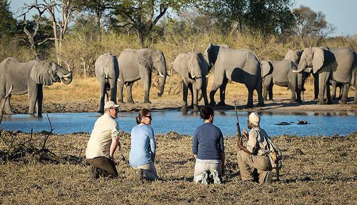 Into the Wilderness | Taga Safaris