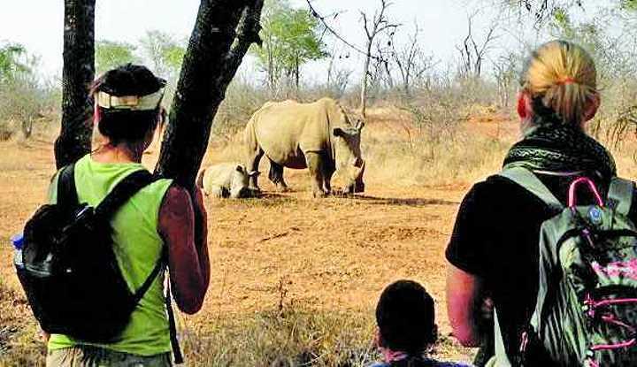 Southern Highlights Tour (16 Days) | Taga Safaris
