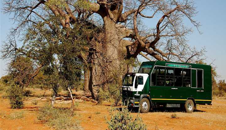 Zimbabwe Tour (16 Days) | African Safaris with Taga