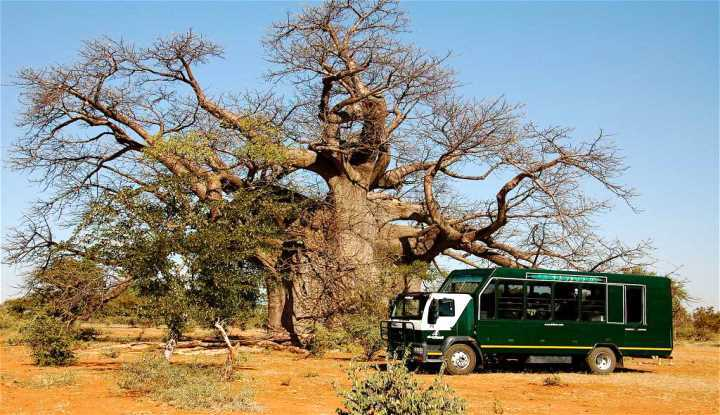 Southern Circle Tour | Taga Safaris Africa