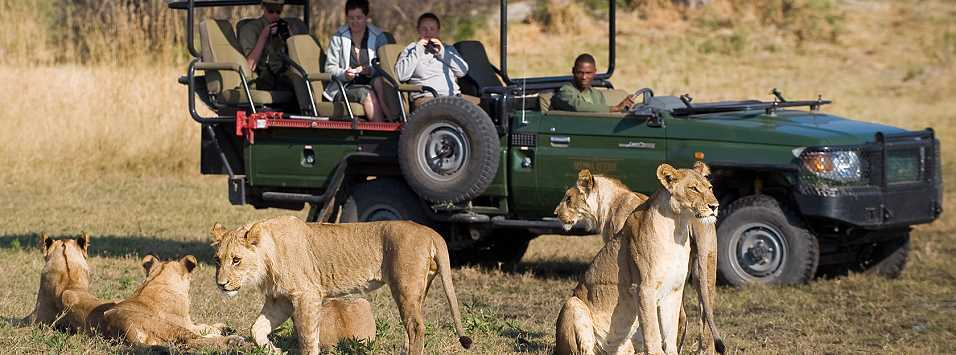 Botswana Safaris | African Safari with Taga