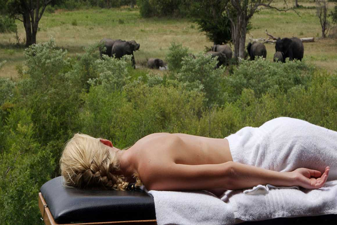 Elephant Plains Game Reserve | African Safari with Taga