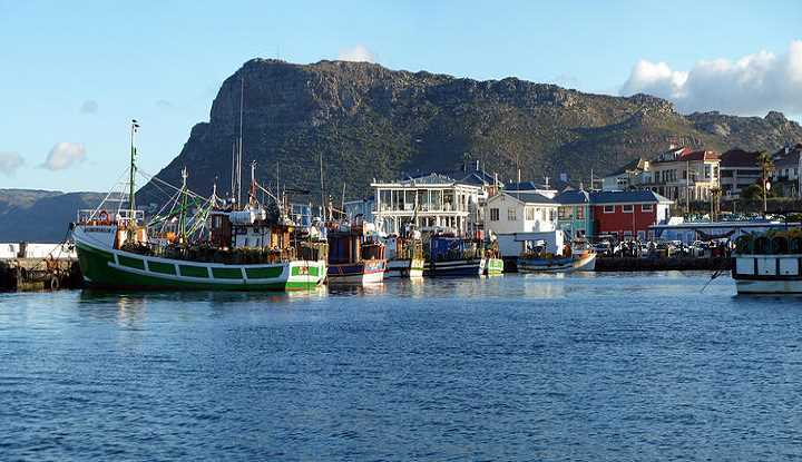 Family Cape Peninsula Tour (FD) | Taga Safaris - An African Safari with the Pioneers