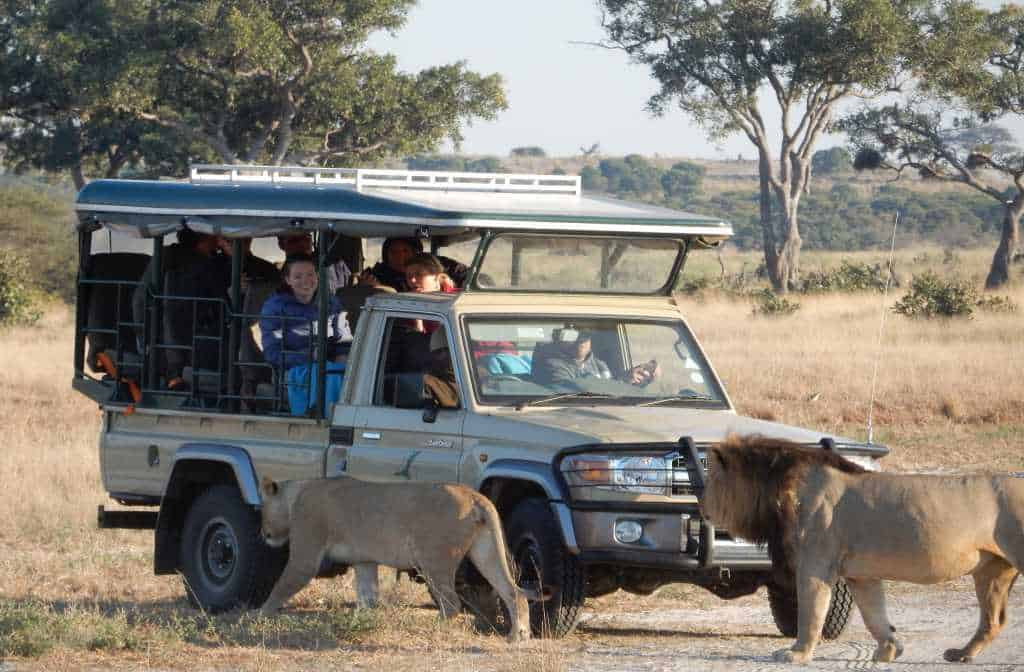 Featured Day Botswana Tour Accommodated