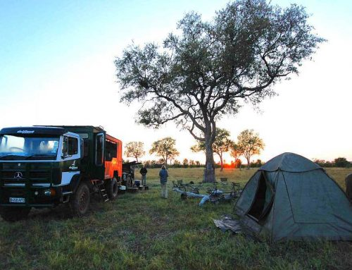 Botswana Camping Tour (16 Days)