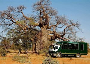 Southern Circle Tour (24 Days) | African Safaris with Taga