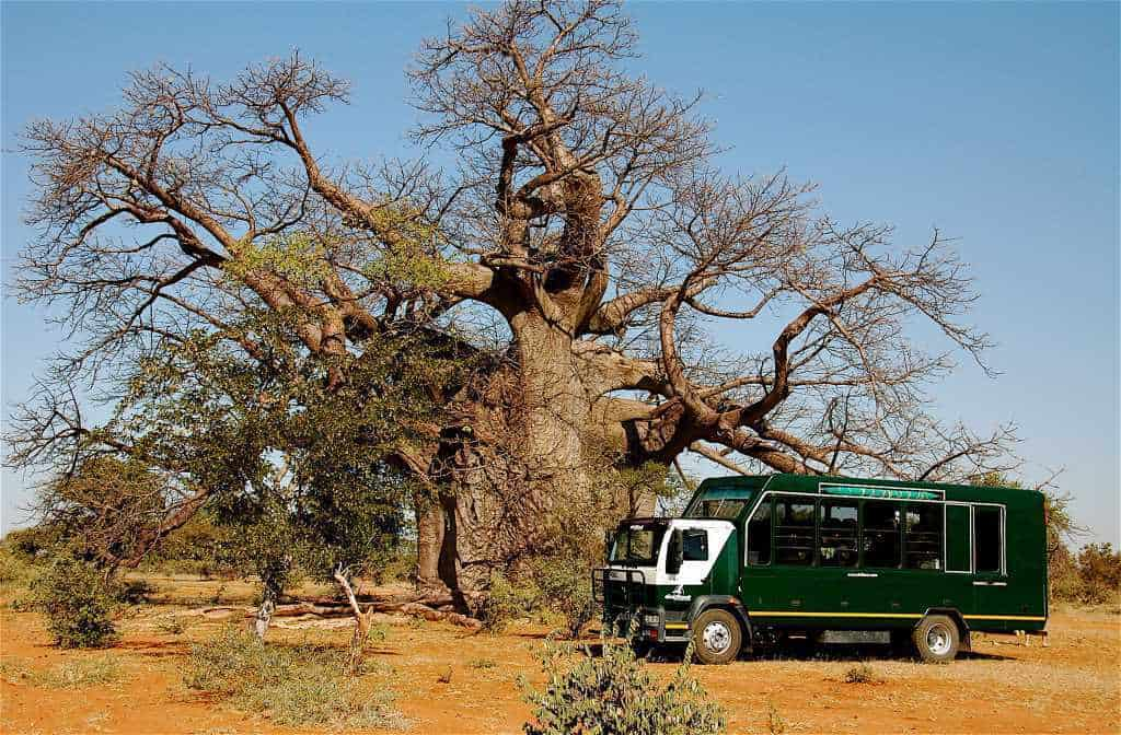 Namibia Accommodated Tour (17 Days) | African Safaris with Taga