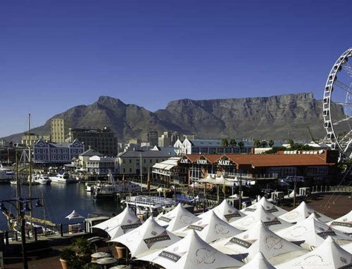 Cape Town City, Table Mountain & Kirstenbosch Tour (FD)