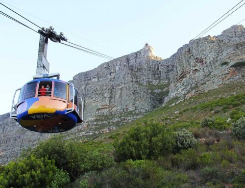 Family Cape Town City Tour & Table Mountain (FD)