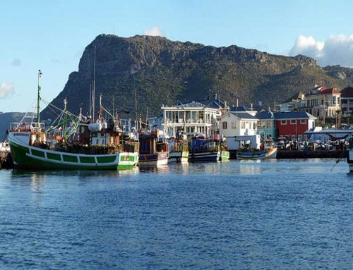 Cape Peninsula & Table Mountain (FD)