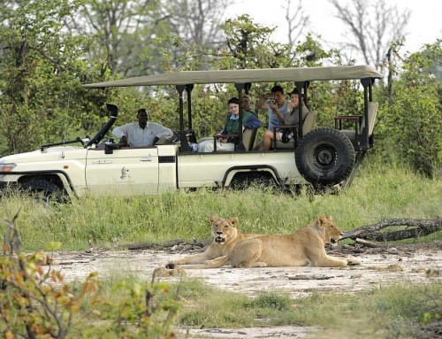 Botswana Southern Sanctuaries