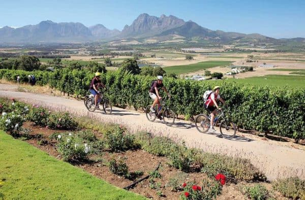Winelands Cycling