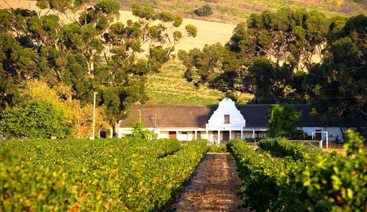 Grand Slam Peninsular Winelands