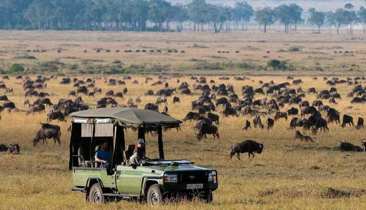 Horseback Safaris and Big