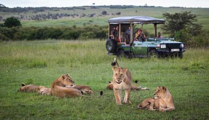 Kenya Horseback Safaris and Big 5 | African Safaris with Taga