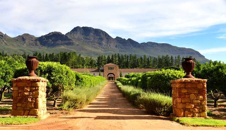 Stellenbosch Winelands Tour (HD) | African Safaris with Taga